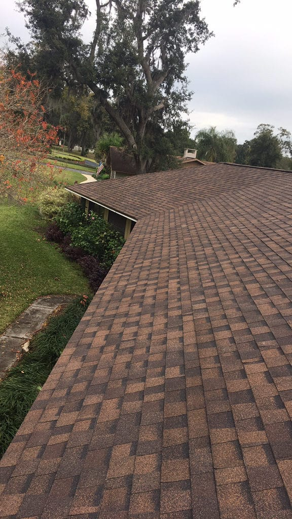 new roof: things you need to know